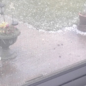 Rocky mountain house hail storm