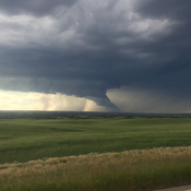 South of Big Valley, AB.