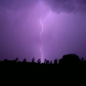 lightning in my back yard