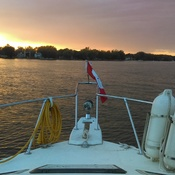 Evening Cruise on Cooks Bay