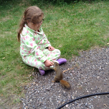 Oldest niece feeding a squirrel💕