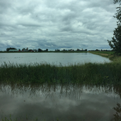 Flooded Fields in Brinston