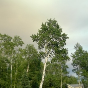 Smoky sky West Bragg Creek