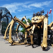 The two biggest spiders in Ottawa met at the National Gallery of Canada!