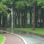 Park in Futian district, Shenzhen