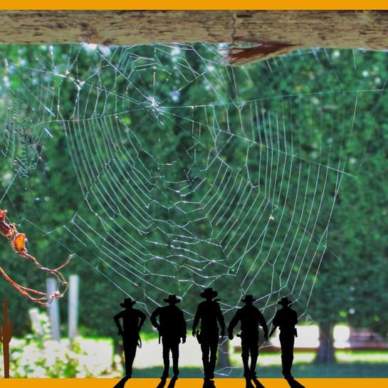 chez l'araignée chambord