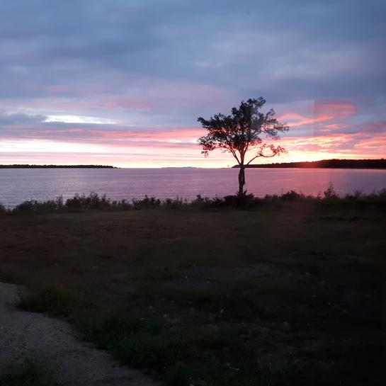 Julia Bay Barrie Island, ON