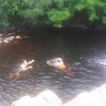 at the mill in longcove nl swimming