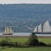 Tall ships in the Annapolis Basin
