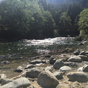 Gold creek