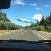 Orca flying over Inland Highway on Vancouver Island
