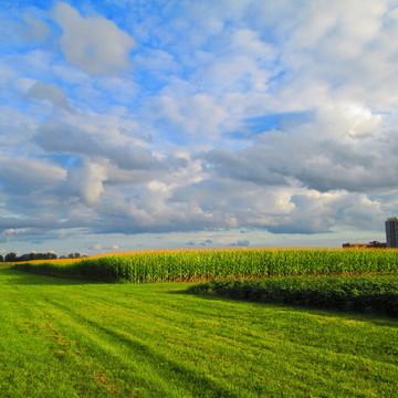 Clouds over Experimental Farm in Ottawa in Evening