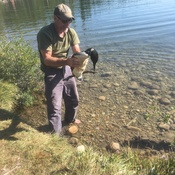 Loon Rescue