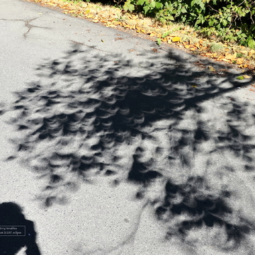 Shadows during the eclipse