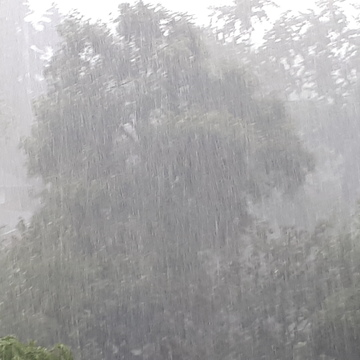 Monsoon pouring down
