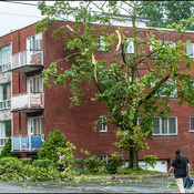 Devastating storm leaves 57,000 without power in Montreal