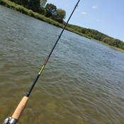 Fishing the Saugeen River