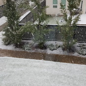 Edmonton snowing in September!!
