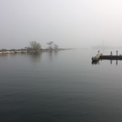 Port Credit Harbour Marina - Foggy Saturday Morning