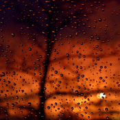 Rain Drops Sunset