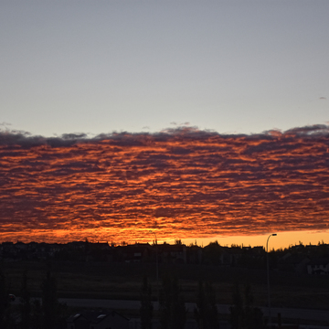 GOOD MORNING CALGARY @ 7.23 AM