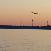 Port Dover sunset