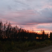 Fall picture (forest fire view) from La Ronge to beautiful Beauval