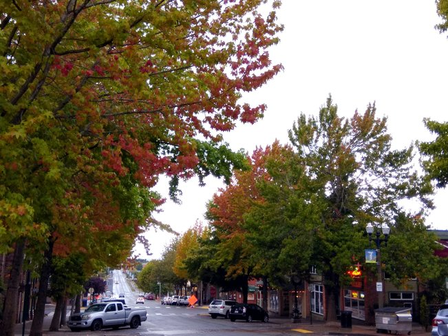Early fall in Fairhaven Bellingham, WA, United States