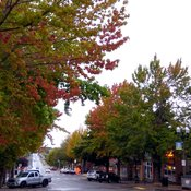 Early fall in Fairhaven