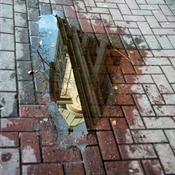Reflection in the sidewalk!
