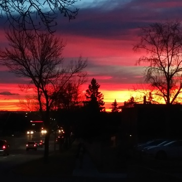 Typical Calgary Sunrise