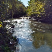 Don River In Autumn's Embrace