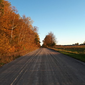 Country Road in Fall Colours