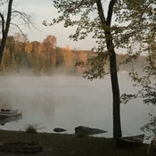 Misty fall morning