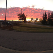 Red morning in Calgary