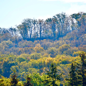 Colours of the Niagara Escarpment