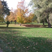 Gibbons Park London Ontario Oct. 19, 2017