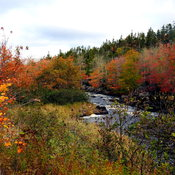 Beautiful autumn day in Nova Scotia along the Musquodobit River