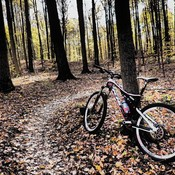 Mountain Biking Durham Forest