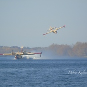 Quebec water bombers filling up in the St. John River to fight fires