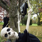 Skeletons preparing for high winds in Ontario