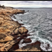 Herring Cove Hike