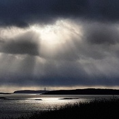beams of light on the bay