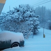 Winter has come in Terrace, BC!