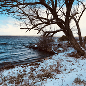 Snow on the Ottawa River