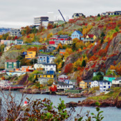 Fall Colors at The Outer Battery, St. John's NL.