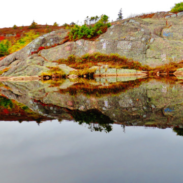Fall color, & calmness, above Fort Amherst, St. John's, NL.