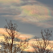 Iridescent clouds just before sunset tonight at 4:00.