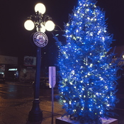 Signs of Christmas in the Byward Market