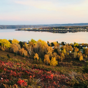 Fall on blueberry hill Botwood newfoundland